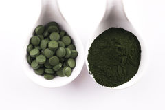 Green chlorella Royalty Free Stock Image
