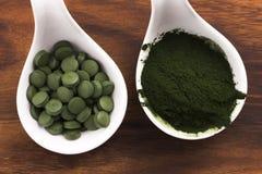 Green chlorella Stock Photos
