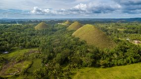 Green Chocolate hills aerial view
