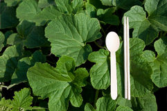 Green Chopsticks and wooden spoons Stock Photography
