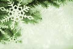 Green christmas background Stock Images