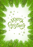 Green Christmas background with fir tree brunches Royalty Free Stock Images