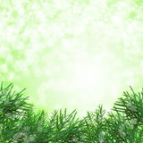 Green Christmas background Stock Photo