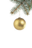 Green Christmas ball hanging on spruce branch Stock Image