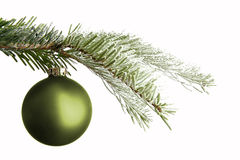 Green Christmas ball on a snowy branch Royalty Free Stock Photography
