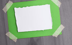 Green Christmas card taped on wall stock photo