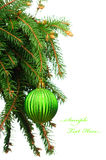Green christmas decoration Stock Image