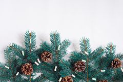 Green Christmas fir tree branches with cones isolated on white background. Royalty Free Stock Photography