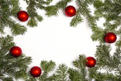 Green Christmas fir tree branches with red balls and copy space. Christmas green framework isolated on white background Royalty Free Stock Image