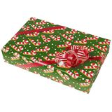 Green Christmas Present Royalty Free Stock Photo