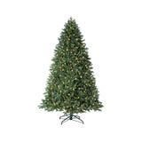Green christmas tree Stock Photo
