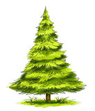 Green christmas tree. Christmas tree illustration  isolated on the white Royalty Free Stock Photography