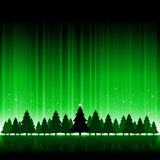 Green Christmas tree background Stock Image
