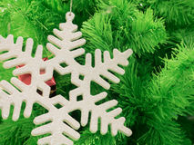 Green Christmas tree background with snowflake Stock Image