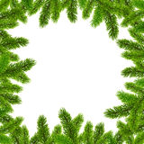 Green Christmas tree branches vector frame Stock Photo