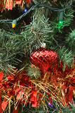 Green Christmas tree color lights red ball ornament Royalty Free Stock Photography