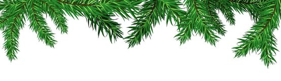 Green Christmas Tree Fir Branches Isolated On White Background Winter Holidays Decoration Concept. Vector Illustration Stock Image