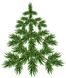 Green Christmas Tree. Fluffy fir. Green pine tree Stock Image