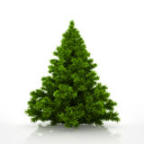 Green christmas tree isolated on white background Stock Photos