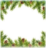 Green Christmas Tree Pine Branches with Pinecones Like Frame wit Stock Image