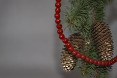Green Christmas tree with red beads and Golden pine cones on bra. Nches with gray blurred background Royalty Free Stock Image