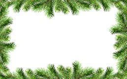Green Christmas tree twigs borders. Isolated on white for holiday background. Top view. Christmas frame stock image