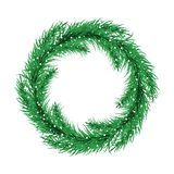 Green christmas tree wreath. Spruce branches Vector. Stock Images