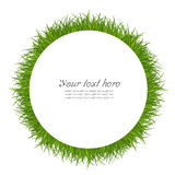 Green circle grass Royalty Free Stock Image