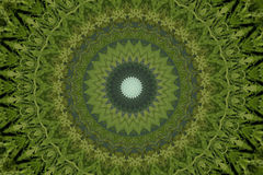Green circular ethnic ornament Stock Images