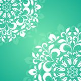 Green circular pattern of the petals Stock Images