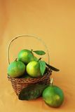 Green citrus Royalty Free Stock Images