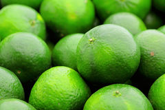 Green citrus fruit. Close up , lime Royalty Free Stock Photography