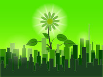 Green city Stock Photography