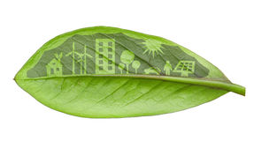 Green futuristic city living concept. Life with green houses, so Royalty Free Stock Image