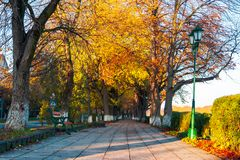 Green city light on autumn embankment. Beautiful urban scenery with colorful foliage on trees in the morning light stock images