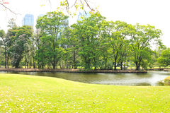 Green city park Royalty Free Stock Photography