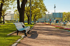 Green city park. Saint-Petersburg Royalty Free Stock Photography