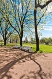 Green city park. Saint-Petersburg Stock Photography