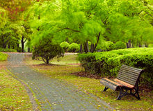 Green city park. Shanghai, China Stock Photography