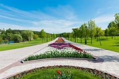 Green city park Stock Photos