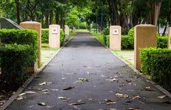 Green city park Stock Photography