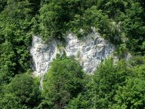 Green cliff Stock Photos