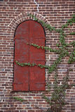 Green climbing vines on red brick wall with uniquely shaped window. Stock Photography