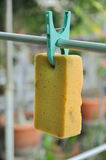 Green clothespin hang sponge for dry Royalty Free Stock Photography