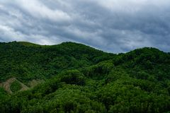 Green cloudy mountains. Deep forest on the mountains. Blue cloudy weather it will be soon rain. A lot of trees royalty free stock photos