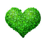 Green Clove Heart Royalty Free Stock Image