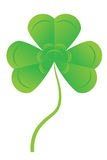 Green clover Stock Images