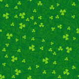 Green clover backgrounds Royalty Free Stock Image