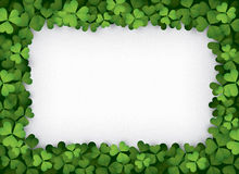 Green clover border Stock Photography