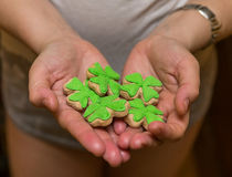 Green clover cakes covered with green mastic delicious and light snacks St. Patrick`s Day Stock Photography